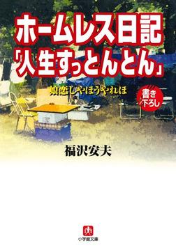 ホームレス日記「人生すっとんとん」(小学館文庫)-電子書籍