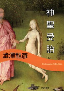 神聖受胎 新装版-電子書籍