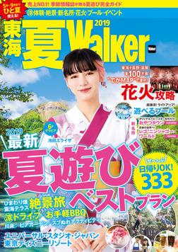 東海夏Walker2019-電子書籍