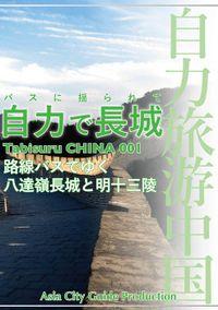 自力旅游中国(―)