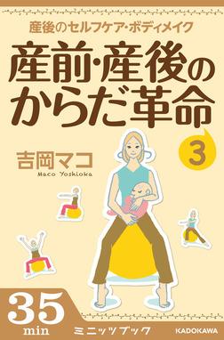 産前・産後のからだ革命3 産後のセルフケア&ボディメイク-電子書籍