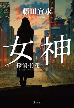 女神~探偵・竹花~-電子書籍