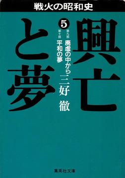 興亡と夢 5-電子書籍