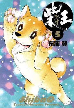 柴王(5)-電子書籍
