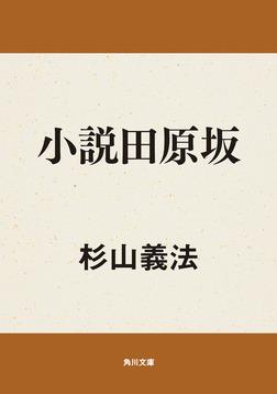 小説田原坂-電子書籍