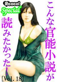 こんな官能小説が読みたかった!vol.18