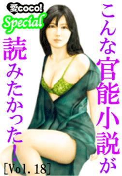 こんな官能小説が読みたかった!vol.18-電子書籍