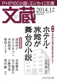 文蔵 2014.12
