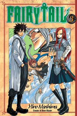 Fairy Tail Manga Book