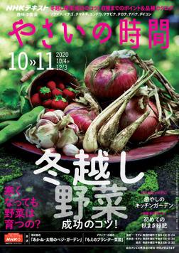 NHK 趣味の園芸 やさいの時間 2020年10月・11月号-電子書籍