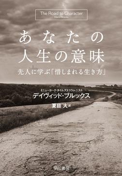あなたの人生の意味 先人に学ぶ「惜しまれる生き方」-電子書籍