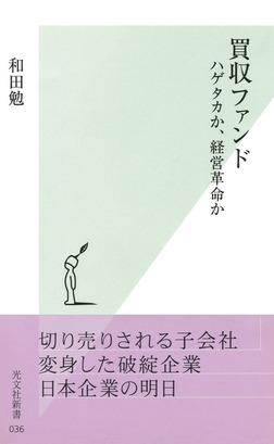 買収ファンド~ハゲタカか、経営革命か~-電子書籍
