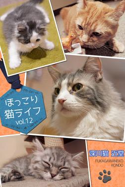ほっこり猫ライフ vol.12-電子書籍