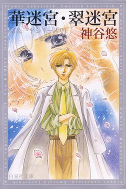 華迷宮・翠迷宮 -京&一平シリーズ 1--電子書籍