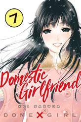 Domestic Girlfriend Volume 7