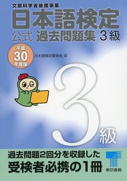 日本語検定 公式 過去問題集 3級 平成30年度版-電子書籍