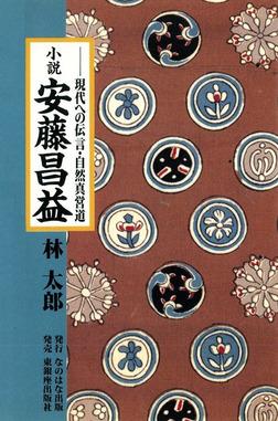 小説・安藤昌益 : 現代への伝言・自然真営道-電子書籍