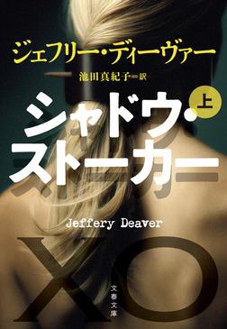 シャドウ・ストーカー 上-電子書籍