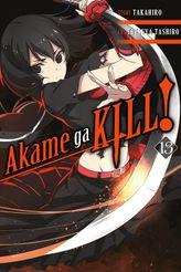 Akame ga KILL!, Vol. 13