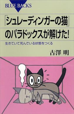 「シュレーディンガーの猫」のパラドックスが解けた! 生きていて死んでいる状態をつくる-電子書籍