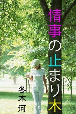 情事の止まり木-電子書籍
