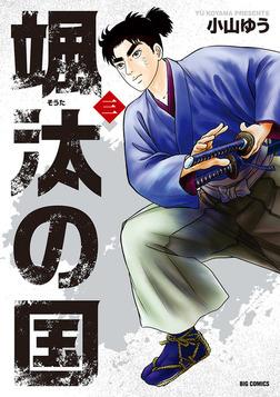 颯汰の国(3)-電子書籍