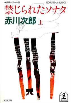 禁じられたソナタ(上・下合冊版)-電子書籍