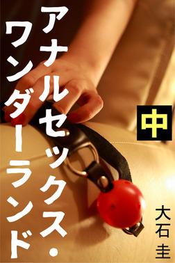 アナルセックス・ワンダーランド 中-電子書籍