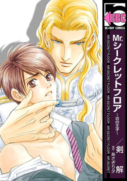 Mr.シークレットフロア ~炎の王子~-電子書籍