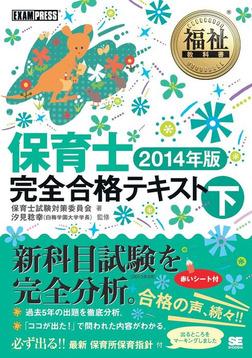 福祉教科書 保育士完全合格テキスト 下 2014年版-電子書籍