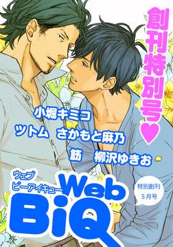 WebBiQ 2012年5月号-電子書籍
