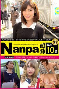 Nanpa図録 File.37