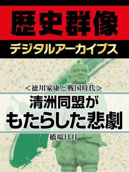 <徳川家康と戦国時代>清洲同盟がもたらした悲劇-電子書籍