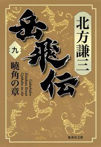 岳飛伝 九 曉角の章