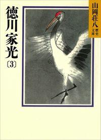 徳川家光(3) 地の声 天の声の巻