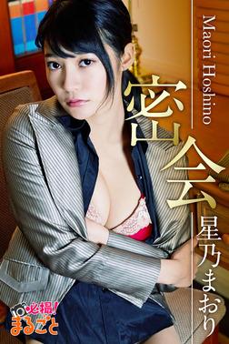 密会 星乃まおり-電子書籍