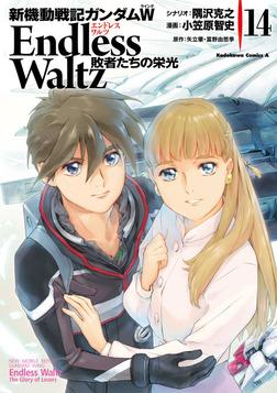新機動戦記ガンダムW Endless Waltz 敗者たちの栄光(14)-電子書籍