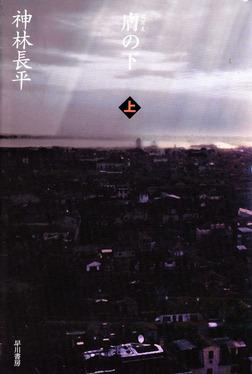 膚の下(上)-電子書籍