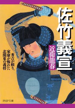 佐竹義宣 秀吉が頼り、家康が怖れた北関東の義将-電子書籍