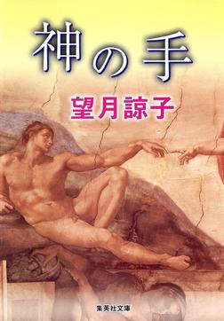 神の手(木部美智子シリーズ)-電子書籍