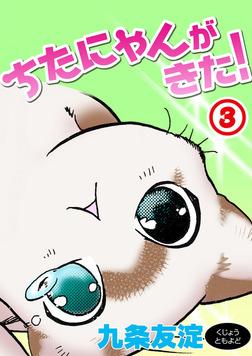 ちたにゃんがきた!3-電子書籍