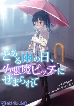 とある雨の日、小悪魔ビッチにせまられて-電子書籍