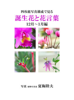 四枚組写真構成で見る誕生花と花言葉12~1月編-電子書籍