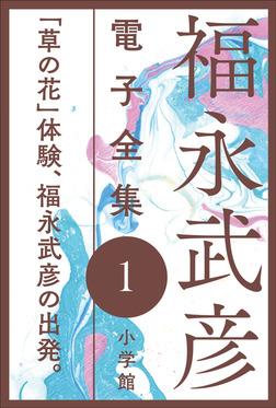 福永武彦 電子全集1 「草の花」体験、福永武彦の出発-電子書籍