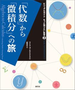 ビジュアルガイド もっと知りたい数学2 「代数」から「微積分」への旅-電子書籍