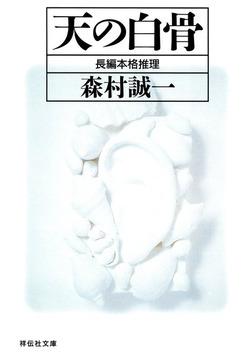 天の白骨-電子書籍