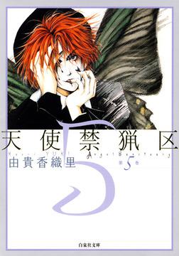 天使禁猟区 5巻-電子書籍