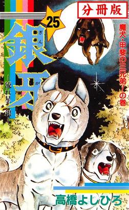 銀牙―流れ星 銀― 【分冊版】 25-電子書籍