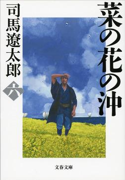 菜の花の沖(六)-電子書籍