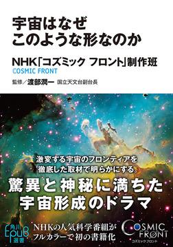 宇宙はなぜこのような形なのか-電子書籍